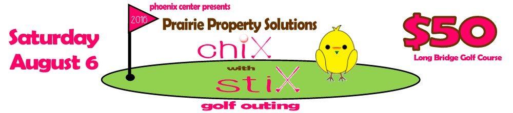 chix website banner2